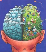 ¿Se puede ejercitar el cerebro para ser más creativos?