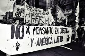 Viaje al pueblo que frenó a Monsanto