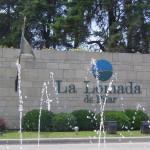 El logo.