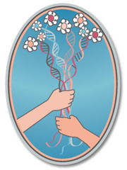 El logo de DSR.
