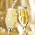champan portada