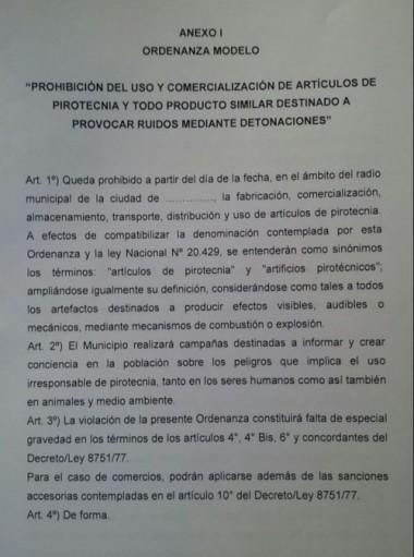 La Defensoría le envió a cada municipio bonaerense un boceto de la ordenanza