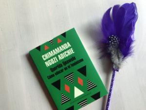 El libro de la autora nigeriana que reflejó el fenómeno.