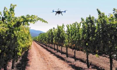 drones agro