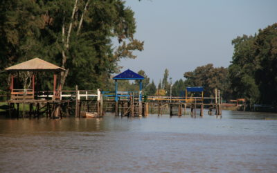 Aguas peligrosas: 20 personas mueren por año en el Delta